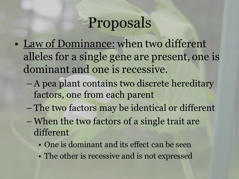 Proposals Law of Dominance: when two different alleles for a single gene are present, one is dominant and one is recessive.