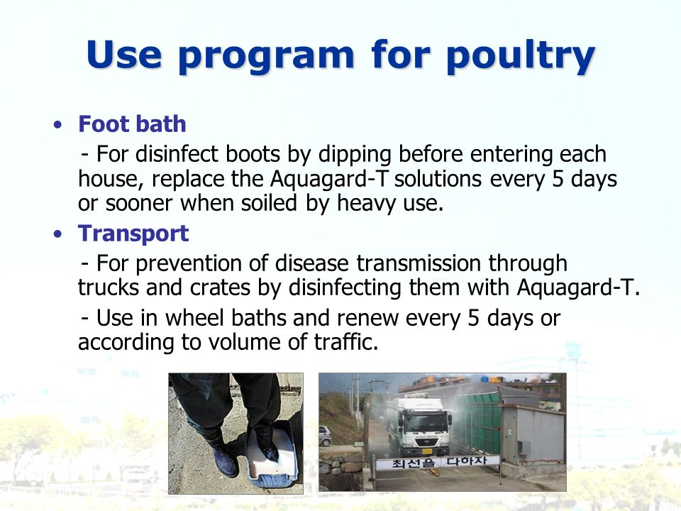 Use program for poultry