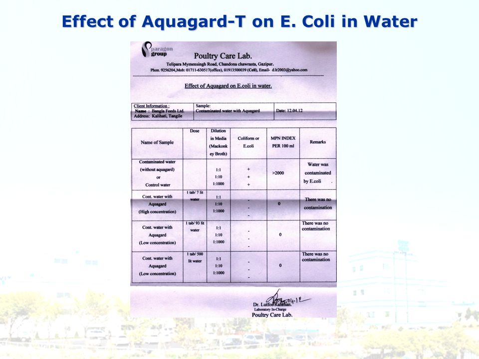 Effect of Aquagard-T on E. Coli in Water