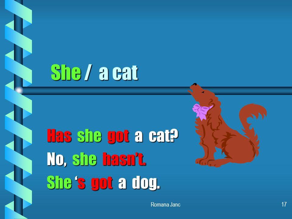 Has she got a cat No, she hasn't. She 's got a dog.