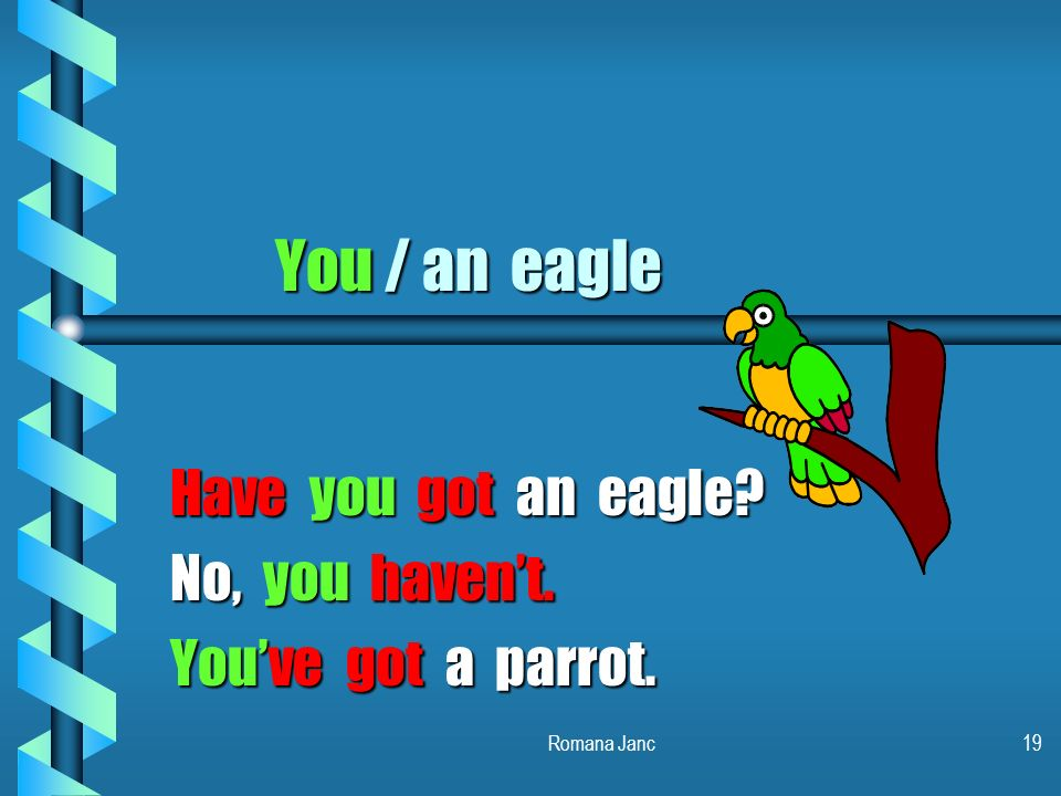 Have you got an eagle No, you haven't. You've got a parrot.