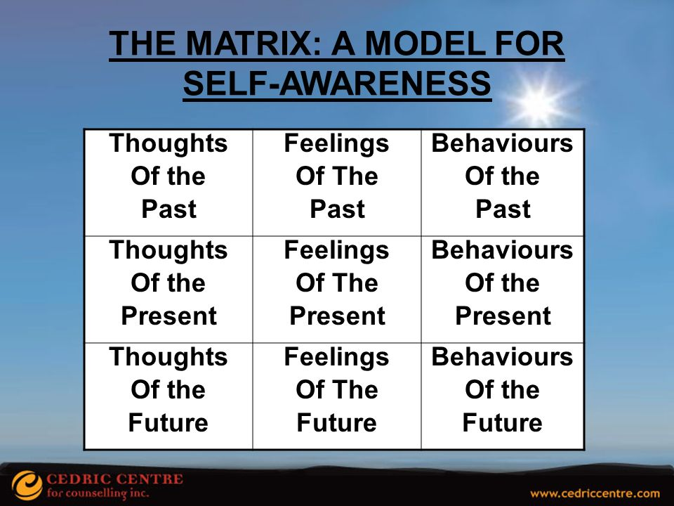 THE MATRIX: A MODEL FOR SELF-AWARENESS