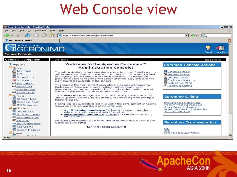 Web Console view