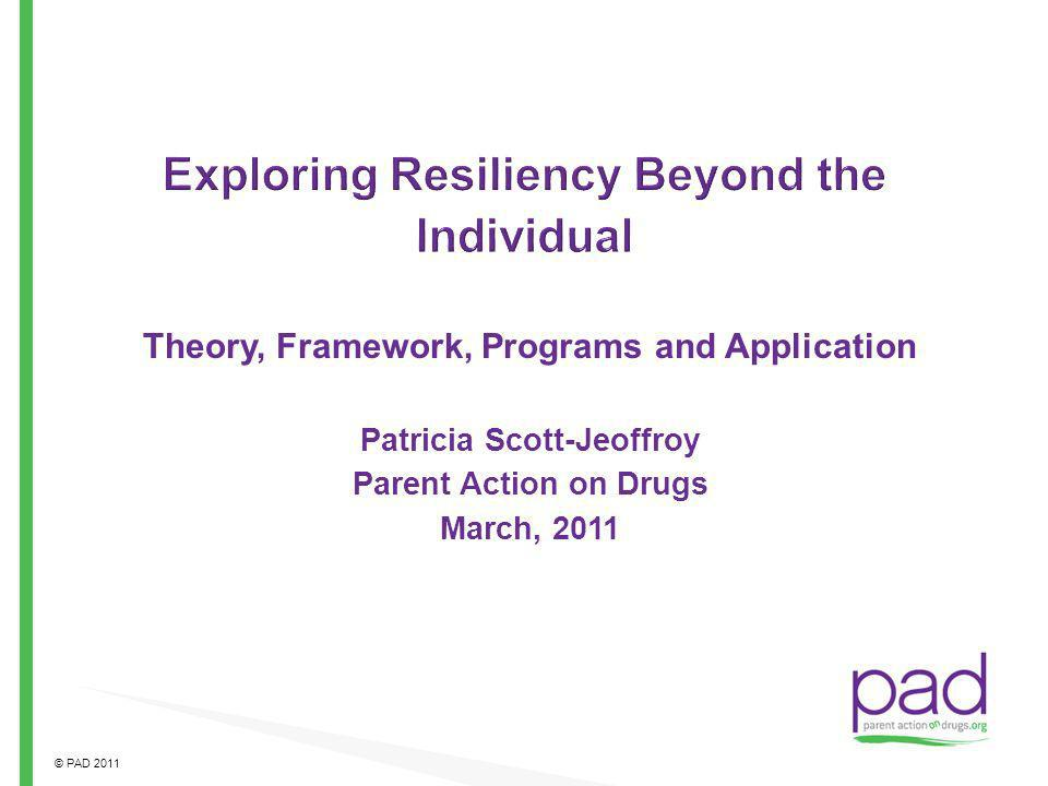 Exploring Resiliency Beyond the Individual