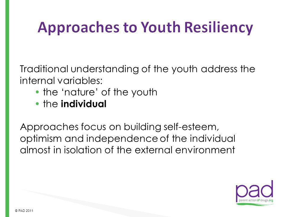 Approaches to Youth Resiliency