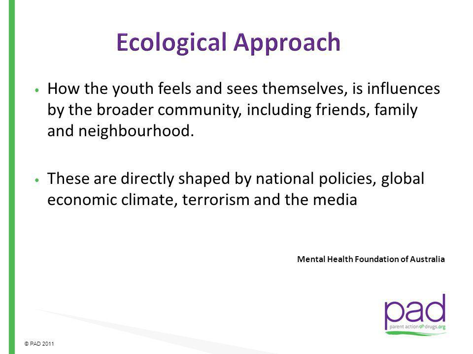 Ecological Approach How the youth feels and sees themselves, is influences by the broader community, including friends, family and neighbourhood.