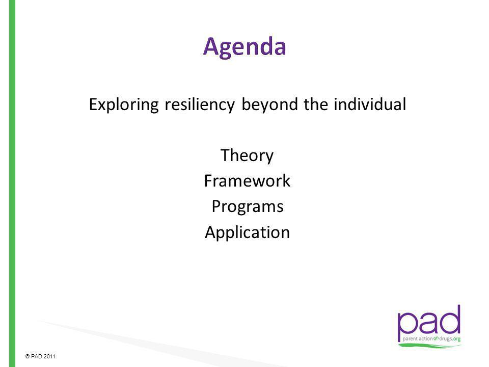 Agenda Exploring resiliency beyond the individual Theory Framework Programs Application