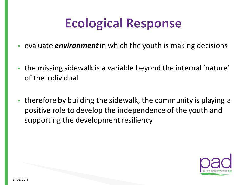 Ecological Response evaluate environment in which the youth is making decisions.