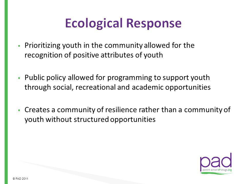Ecological Response Prioritizing youth in the community allowed for the recognition of positive attributes of youth.