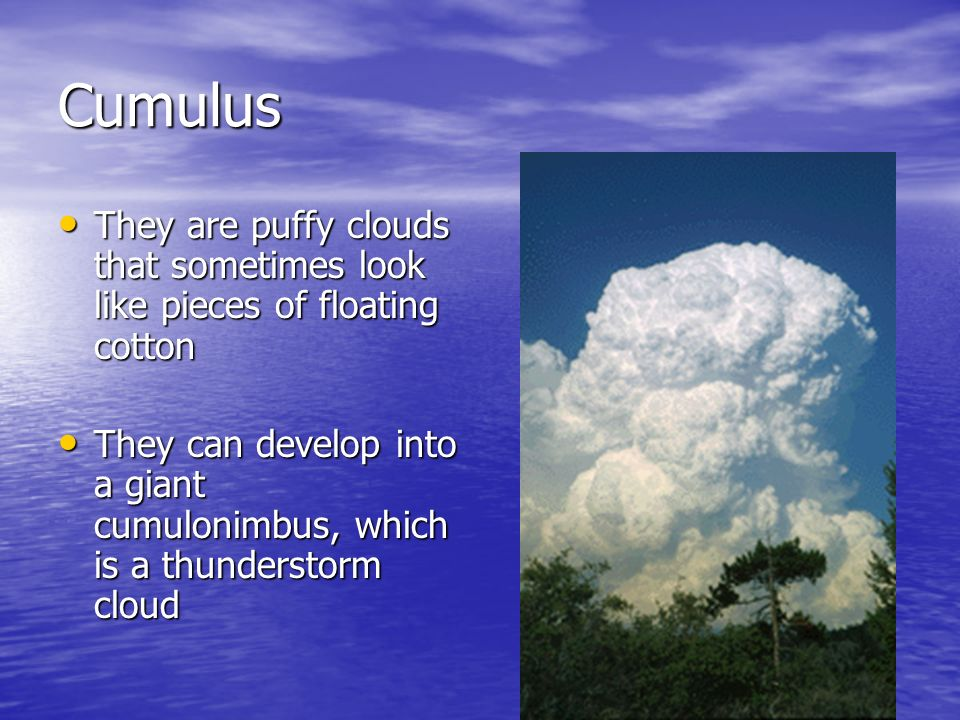 CumulusThey are puffy clouds that sometimes look like pieces of floating cotton.