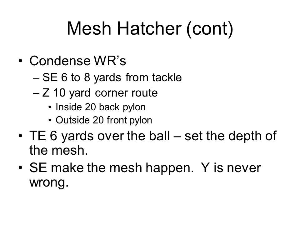 Mesh Hatcher (cont) Condense WR's