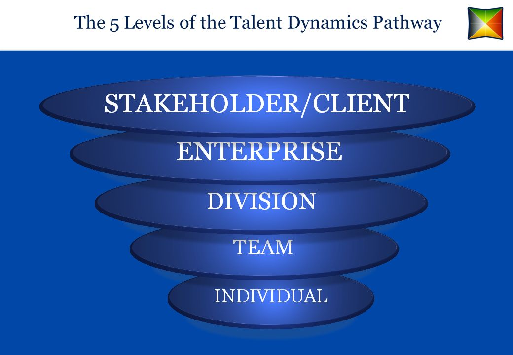The 5 Levels of the Talent Dynamics Pathway