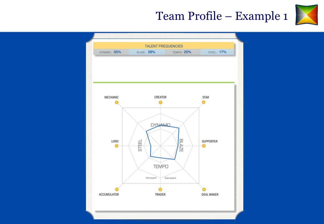 Team Profile – Example 1