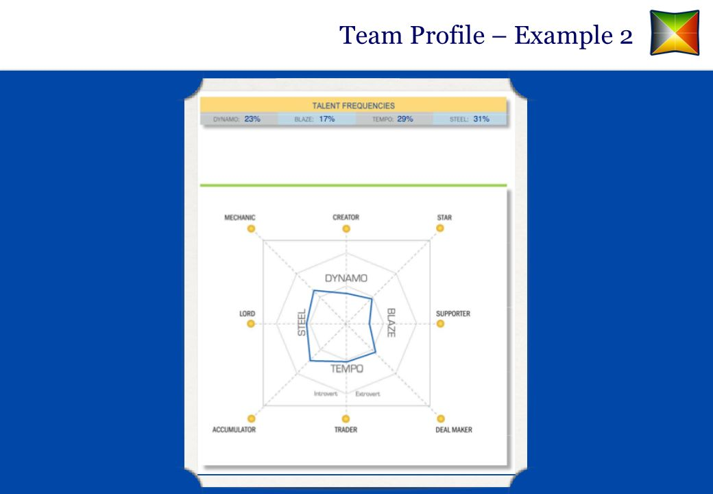Team Profile – Example 2