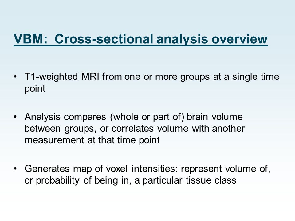 VBM: Cross-sectional analysis overview