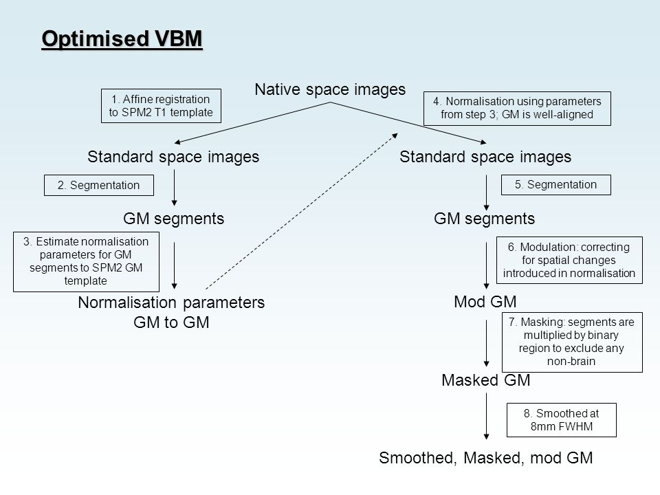 Optimised VBM Native space images Standard space images