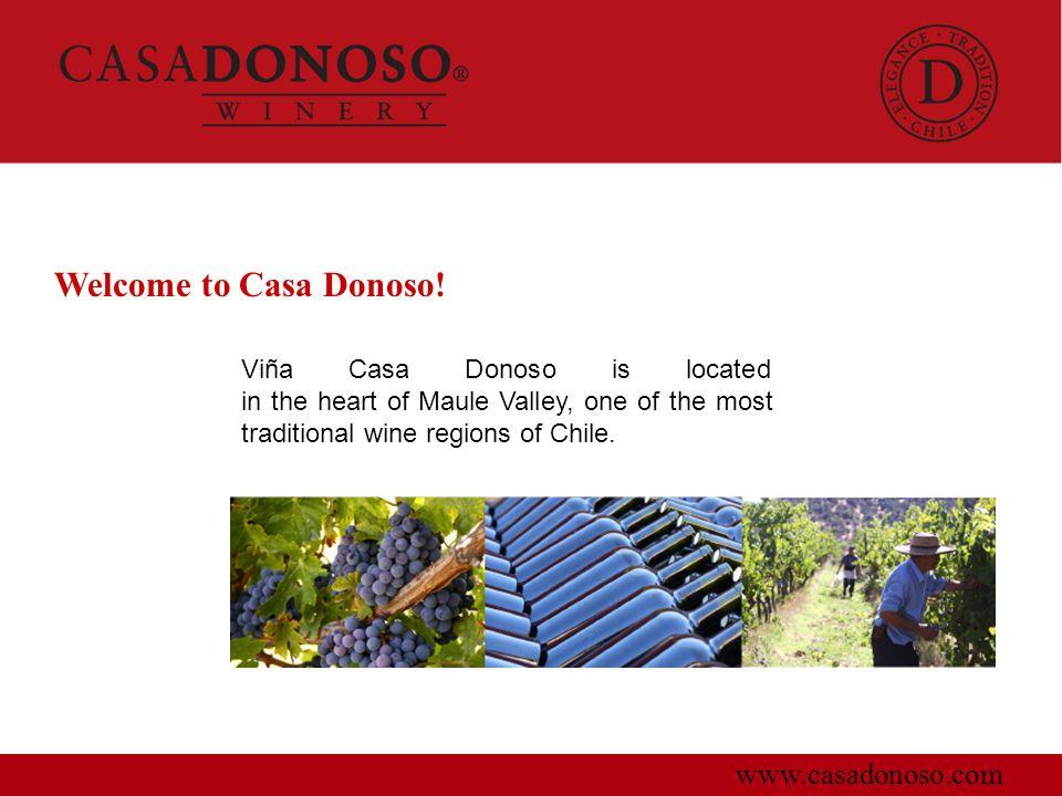 Welcome to Casa Donoso! www.casadonoso.com