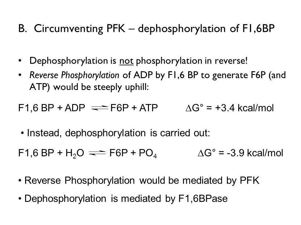 B. Circumventing PFK – dephosphorylation of F1,6BP