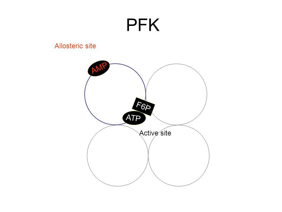 PFK Allosteric site AMP F6P ATP Active site