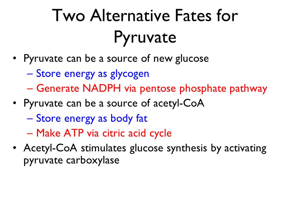 Two Alternative Fates for Pyruvate