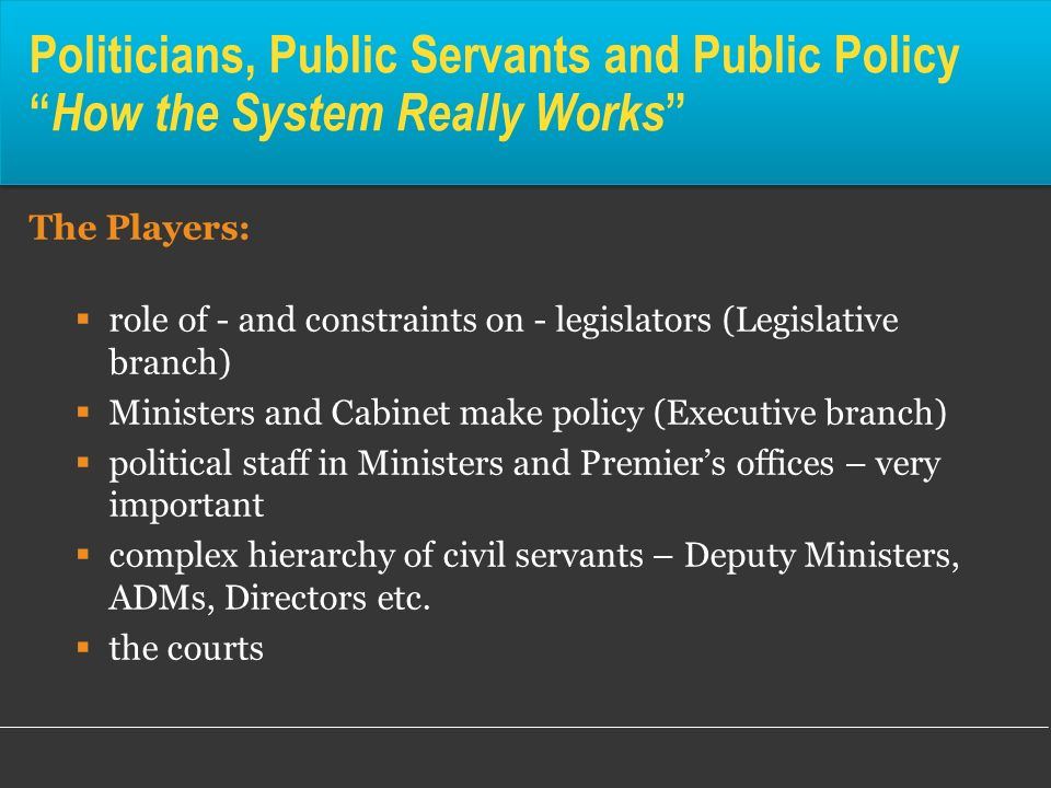 Politicians, Public Servants and Public Policy How the System Really Works