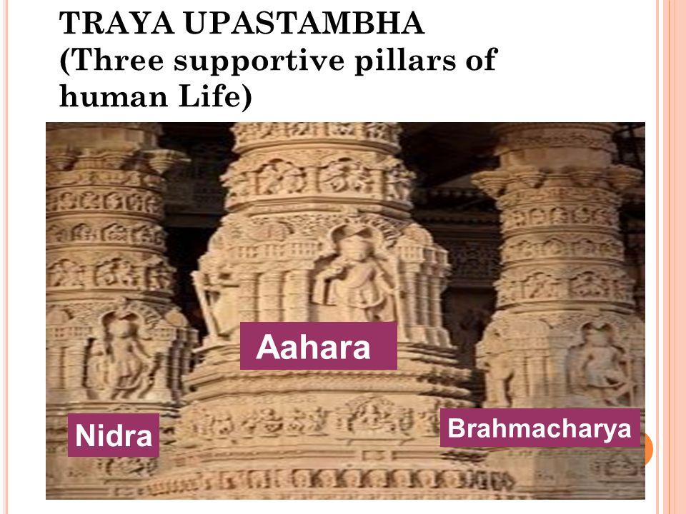 TRAYA UPASTAMBHA (Three supportive pillars of human Life)