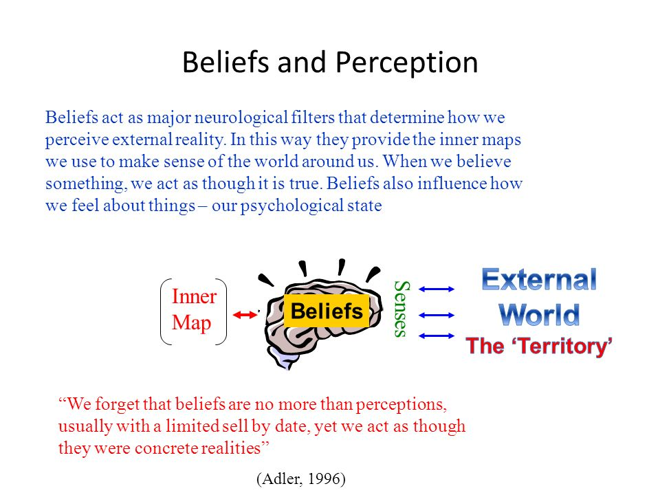 Beliefs and Perception