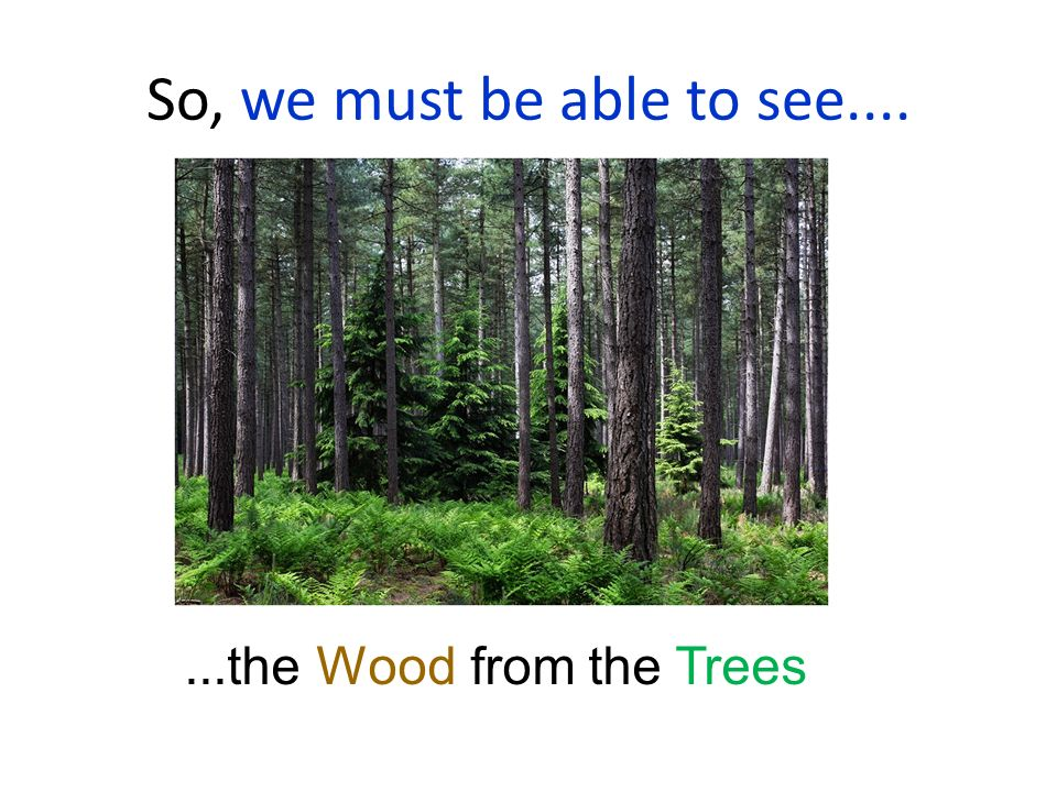 So, we must be able to see.... ...the Wood from the Trees