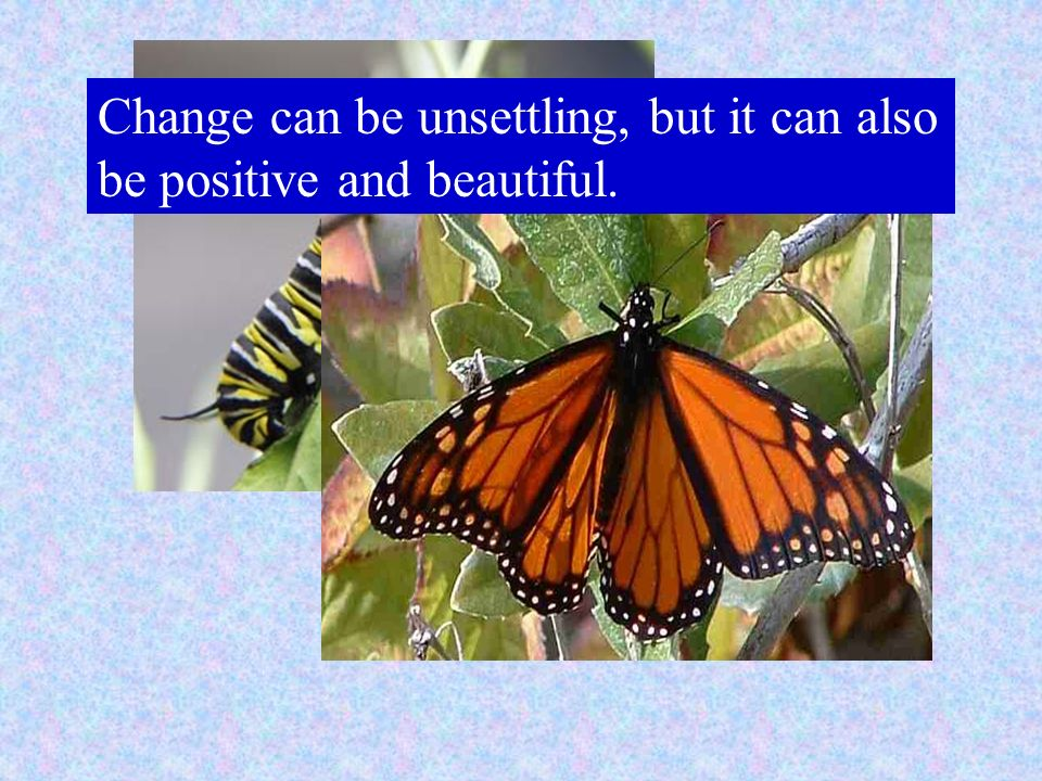 Change can be unsettling, but it can also be positive and beautiful.