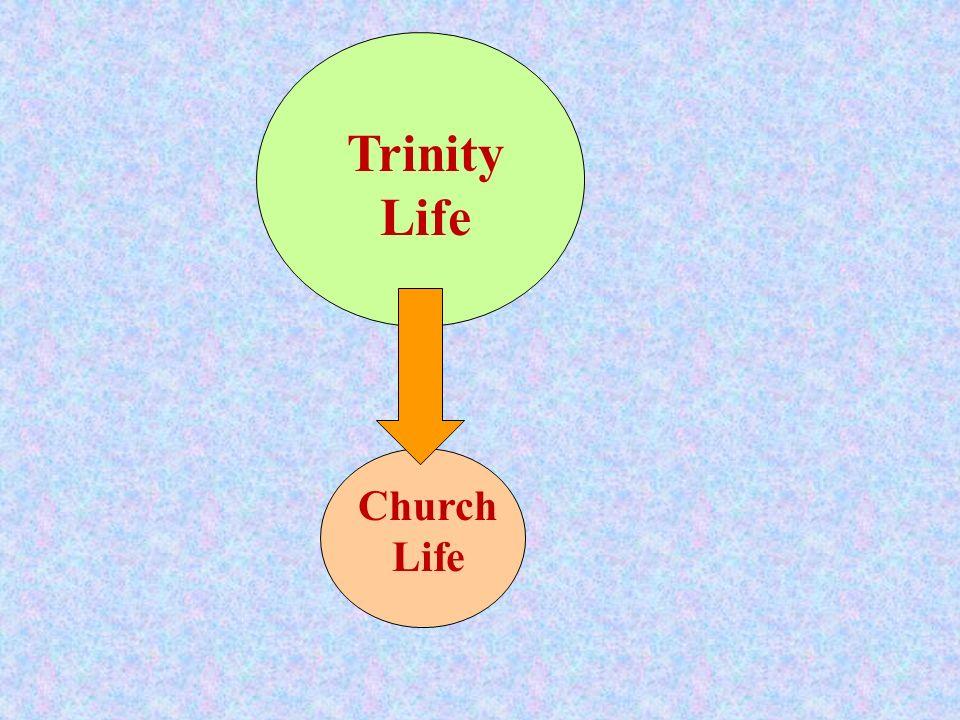 Trinity Life Church Life