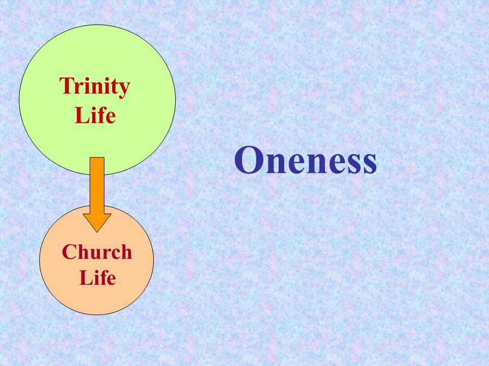 Trinity Life Oneness Church Life