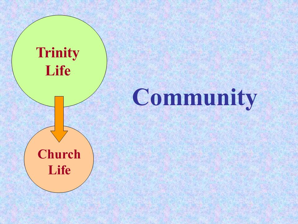 Trinity Life Community Church Life