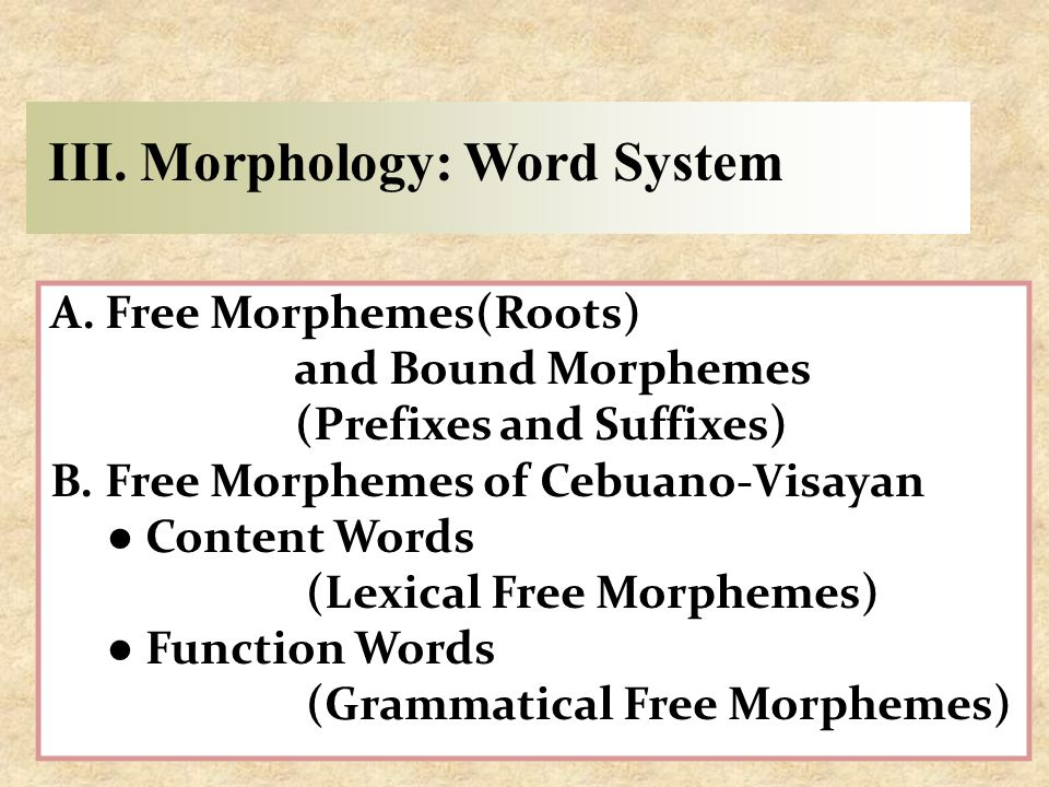 III. Morphology: Word System