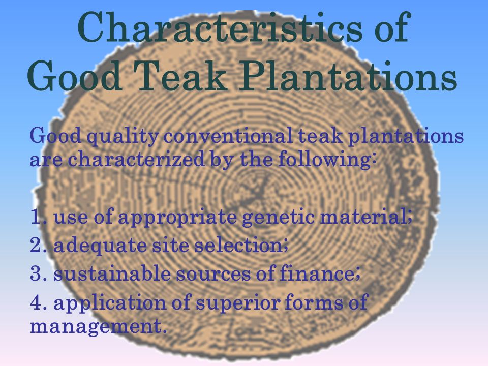 Characteristics of Good Teak Plantations