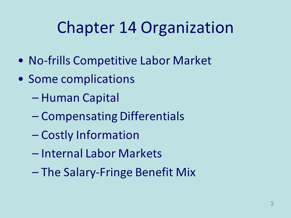 Chapter 14 Organization No-frills Competitive Labor Market