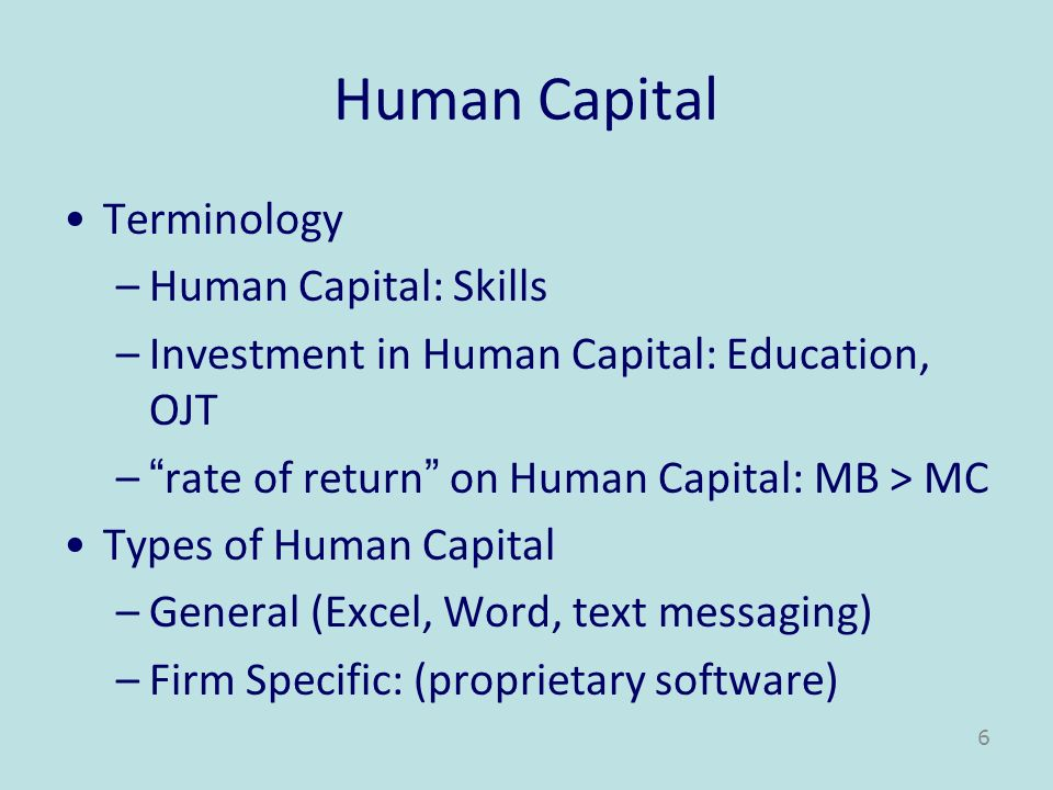 Human Capital Terminology Human Capital: Skills