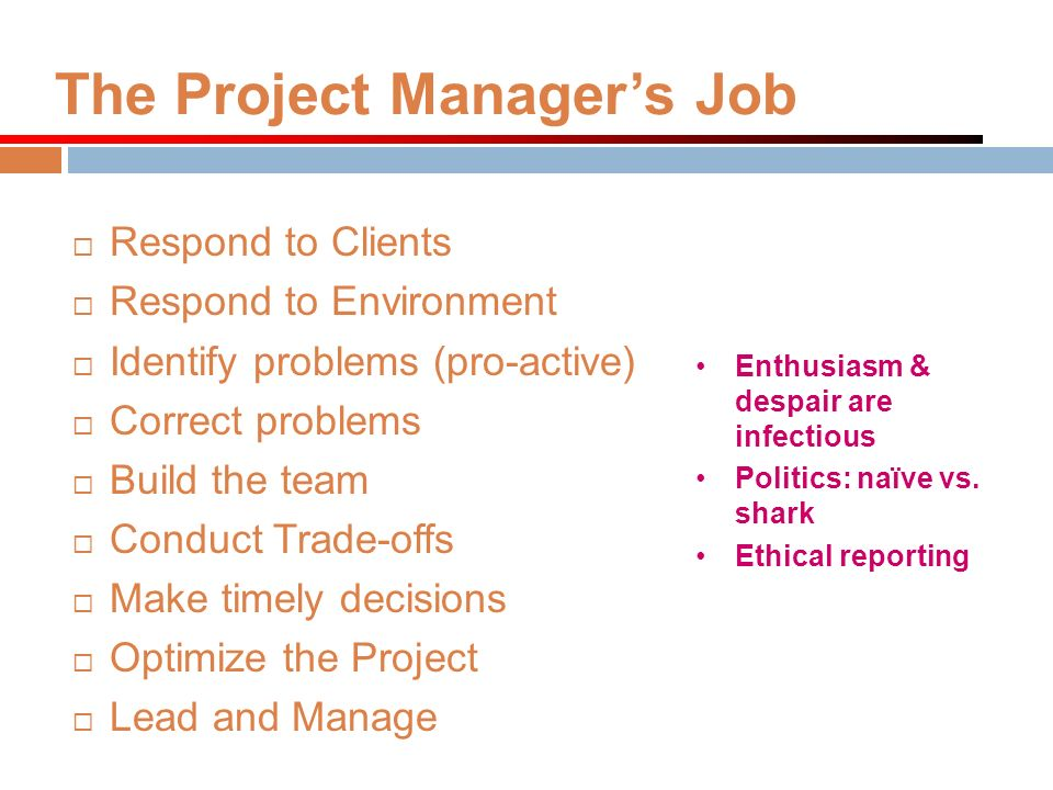 The Project Manager's Job