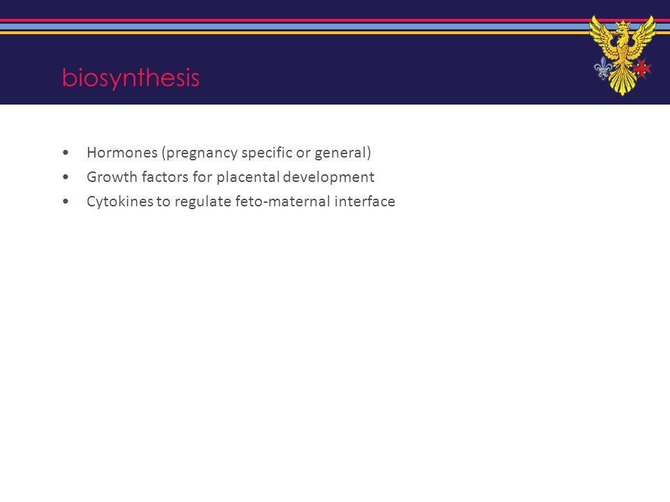 biosynthesis Hormones (pregnancy specific or general)
