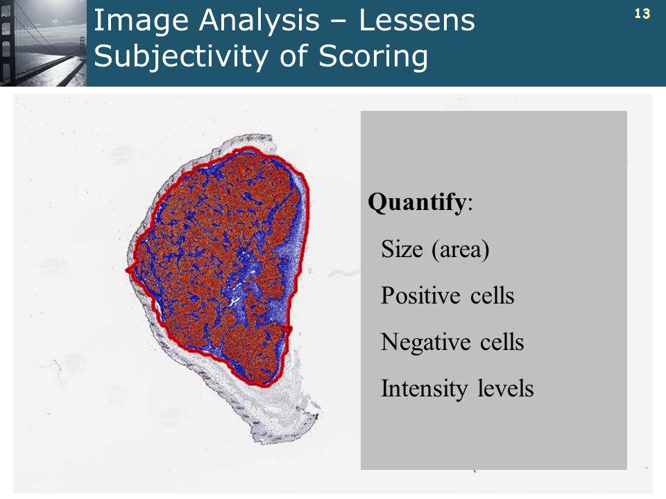 Image Analysis – Lessens Subjectivity of Scoring