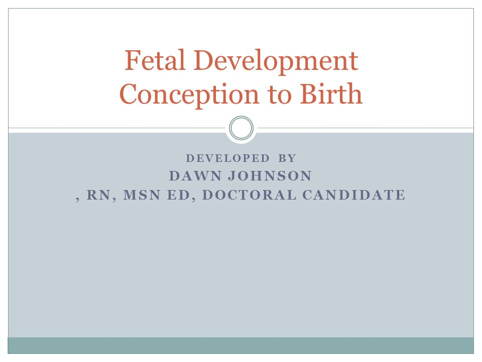 Fetal Development Conception to Birth