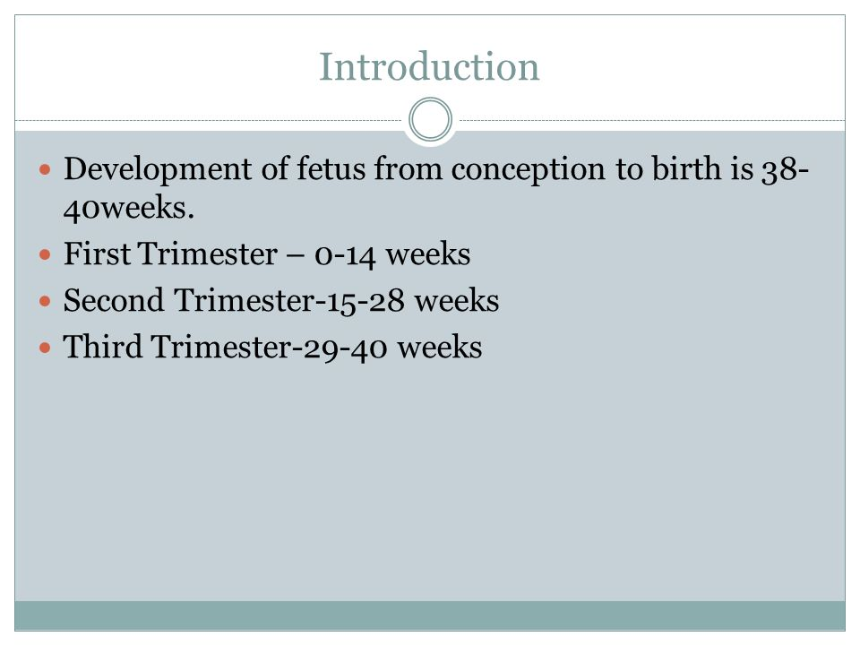 Introduction Development of fetus from conception to birth is 38-40weeks. First Trimester – 0-14 weeks.