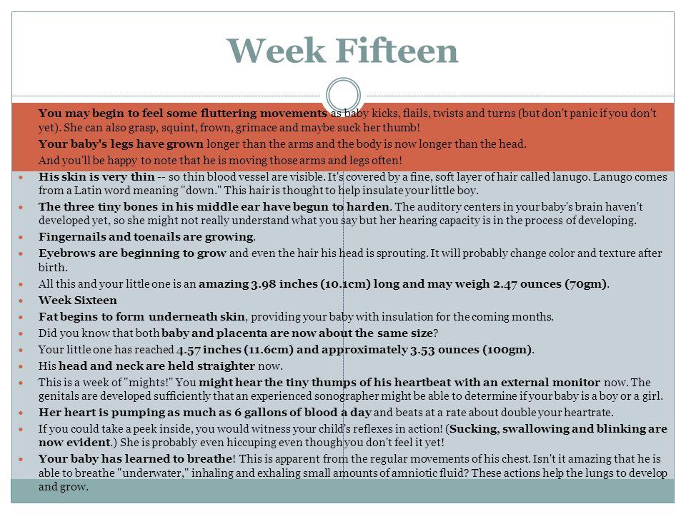 Week Fifteen