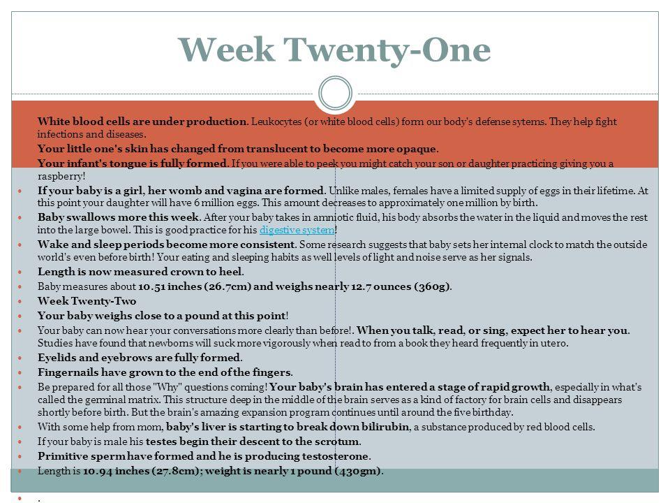 Week Twenty-One