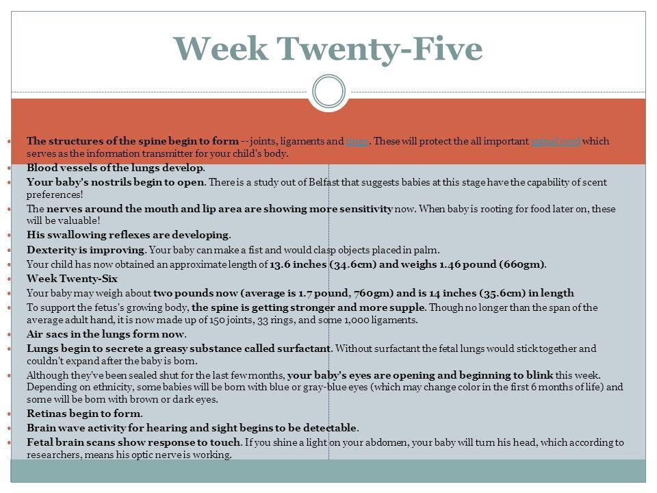 Week Twenty-Five