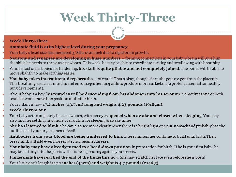 Week Thirty-Three Week Thirty-Three