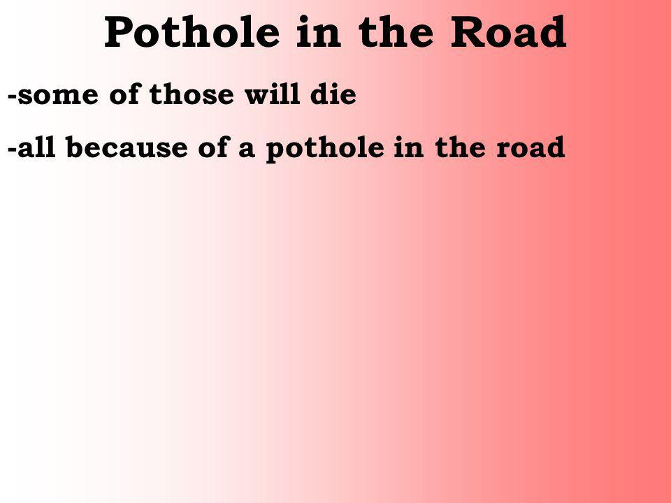 Pothole in the Road -some of those will die