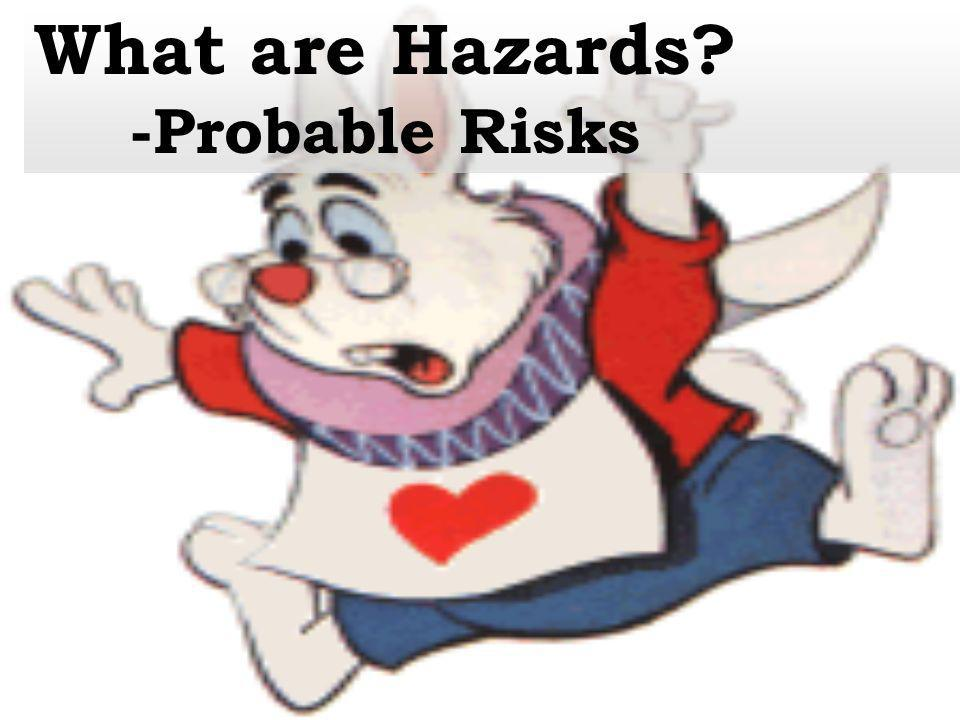 What are Hazards -Probable Risks