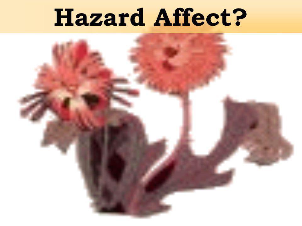 Hazard Affect