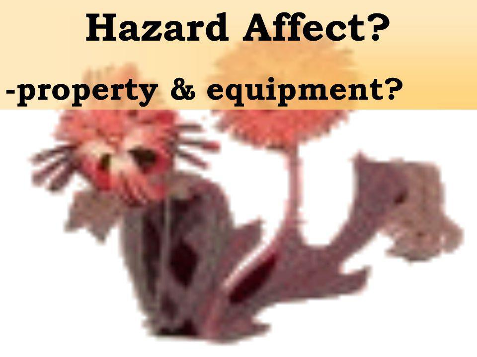 Hazard Affect -property & equipment