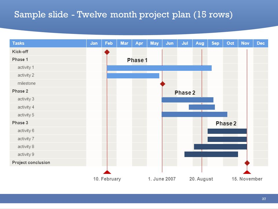 Sample slide - Twelve month project plan (15 rows)
